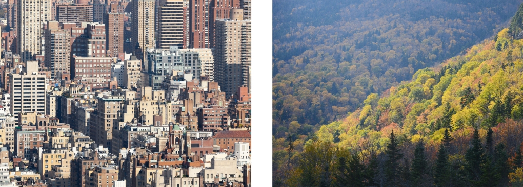 Juxtaposition 3